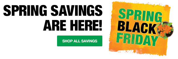 Home Depot's Spring Black Friday Sale