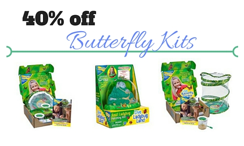 40 Off Ladybug And Butterfly Garden Kits Southern Savers