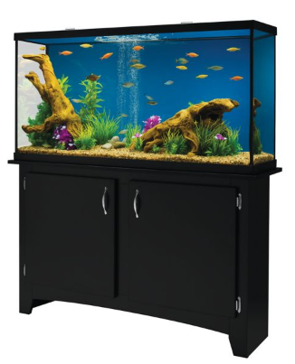 Petsmart up to 50 off free shipping southern savers for 55 gallon fish tank petco