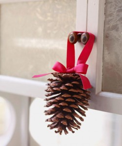 55005ae4c2851-pine-cone-craft-1209-s3