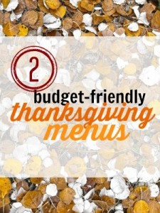Thanksgiving is special, but that doesn't mean it has to break the bank! Here are 2 examples of budget-friendly Thanksgiving menus you can plan this year.
