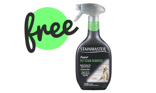 stainmaster coupon