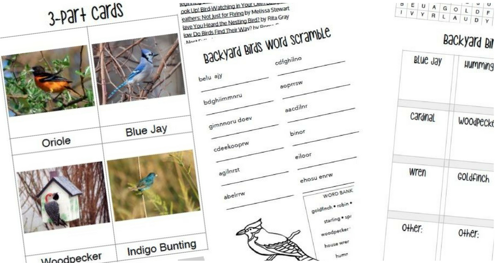 Hereu0027s A Fun FREE Printable You Can Download To Help Your Kids Learn About  Common Backyard Birds And How To Identify Them.