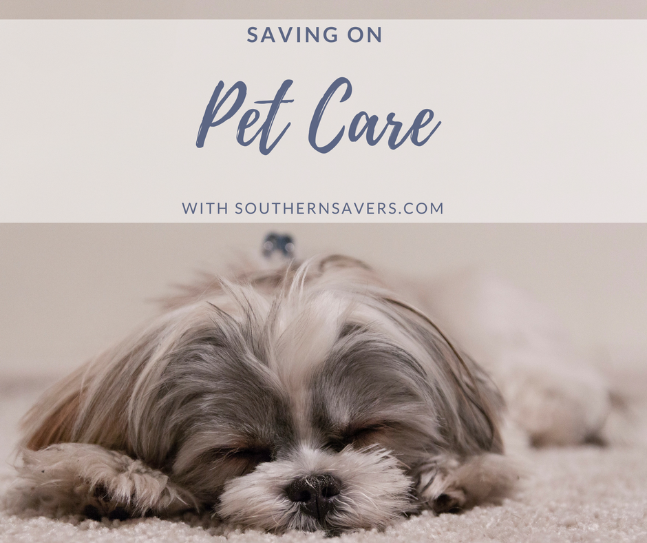 live online q u0026a 7  17  saving on pet care    southern savers