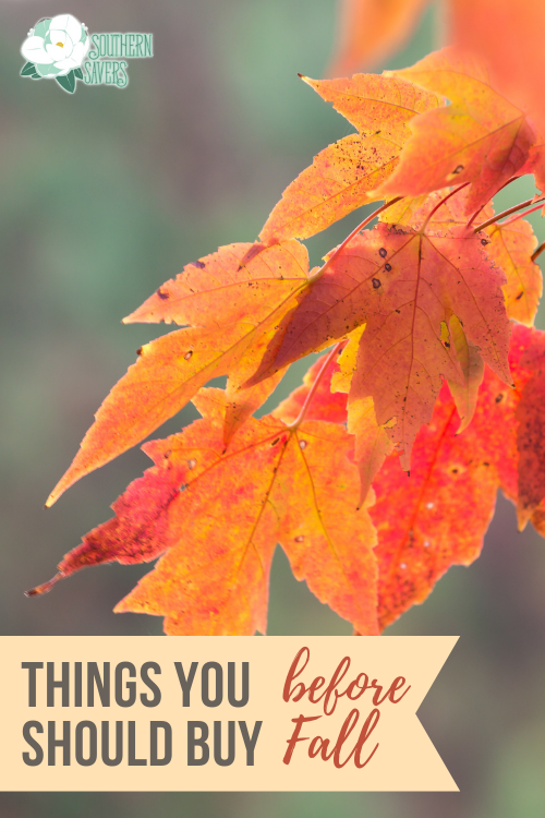 If you want to make the most of your budget, here are all the things you should buy before fall and they get more expensive!