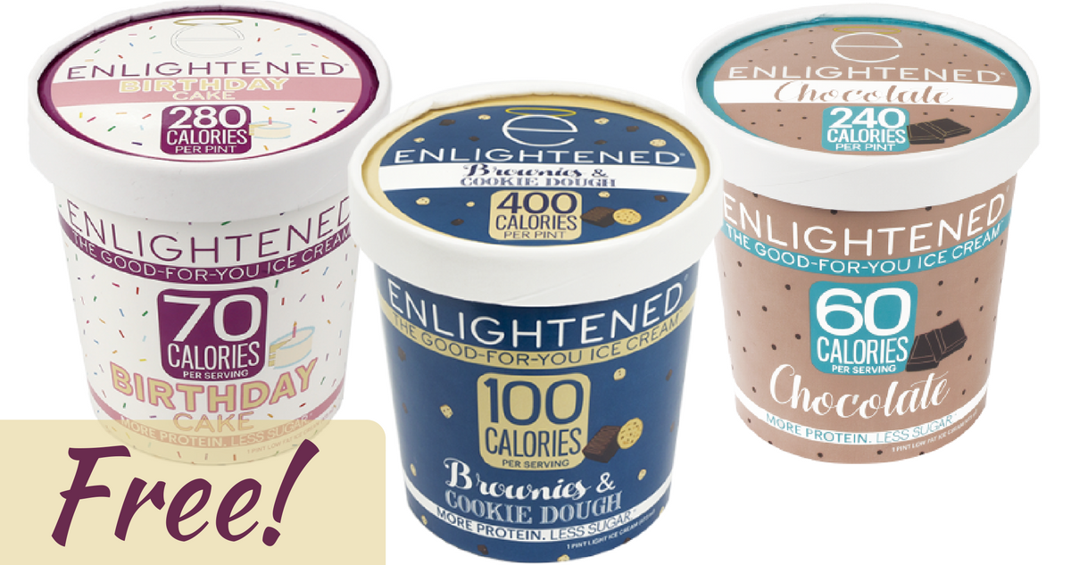money maker enlightened ice cream at publix     southern