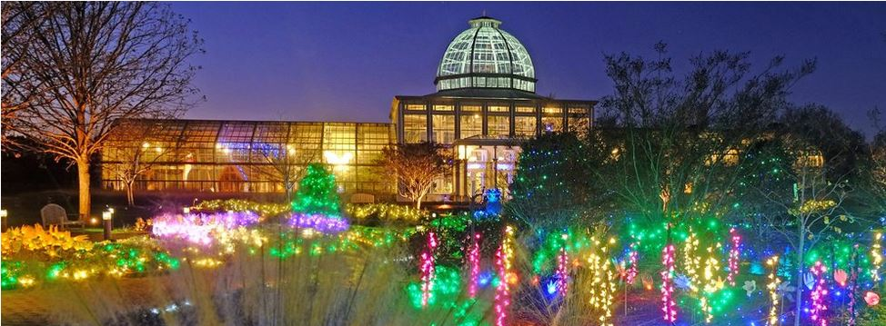 Top Christmas Lights Activities Around The South East Southern