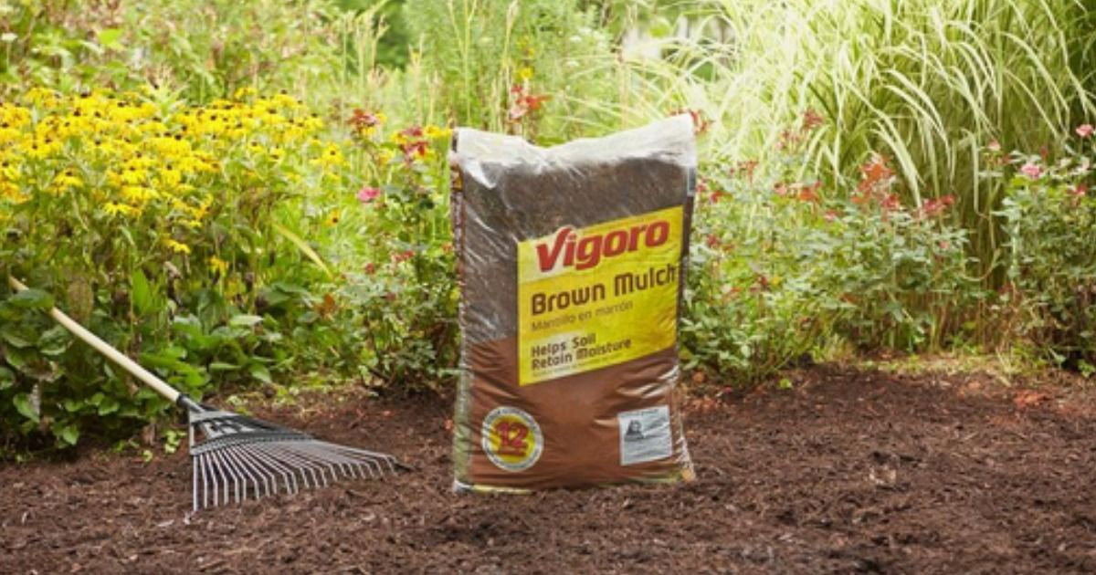 Home Depot 2 Bags Of Mulch More