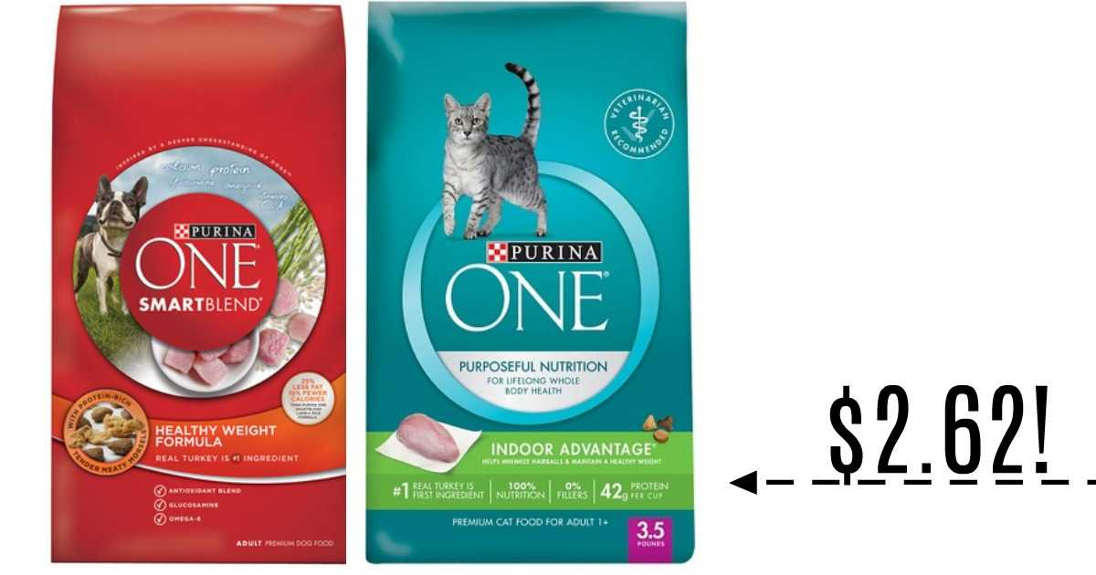 graphic regarding Printable Pet Coupons titled Purina Discount codes Doggy Foods Baggage for $2.62 :: Southern Savers