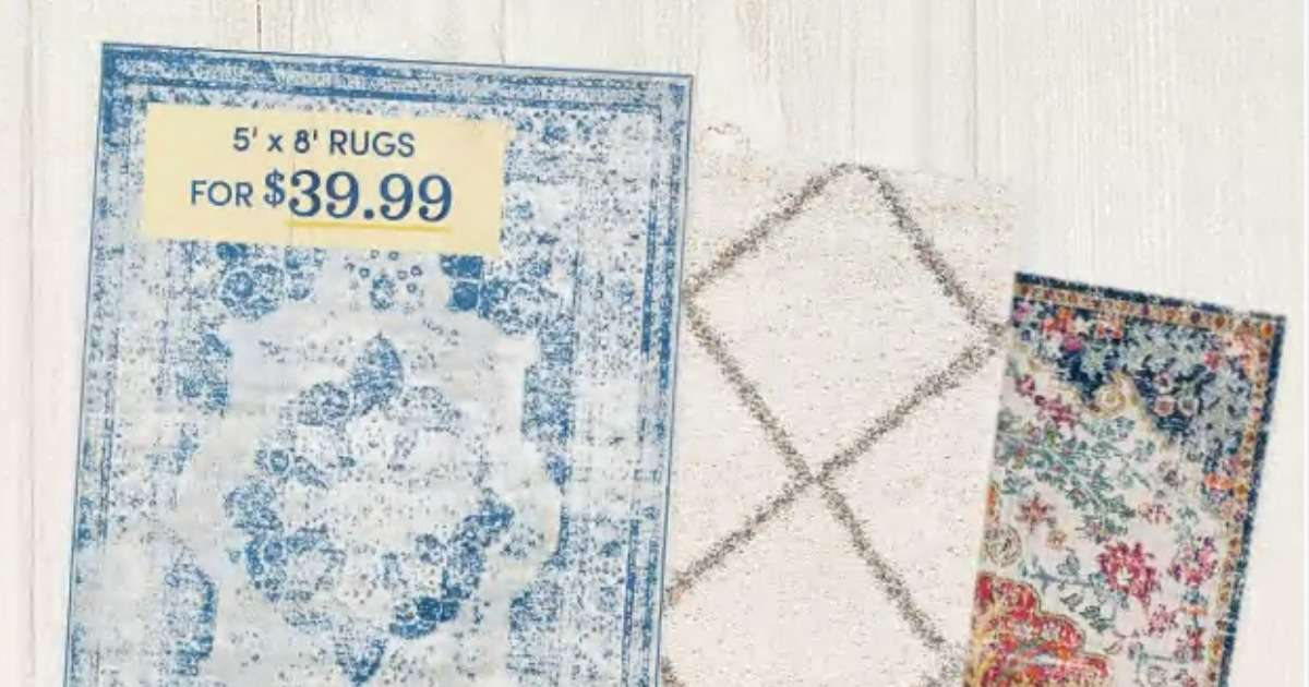 Wayfair Sale 5x8 Area Rugs For 39 99 Southern Savers