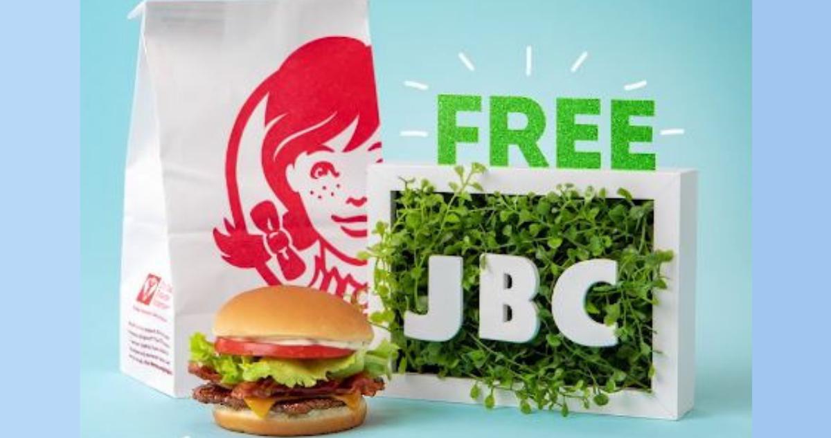 Wendy S App Free Junior Bacon Cheeseburger Southern Savers