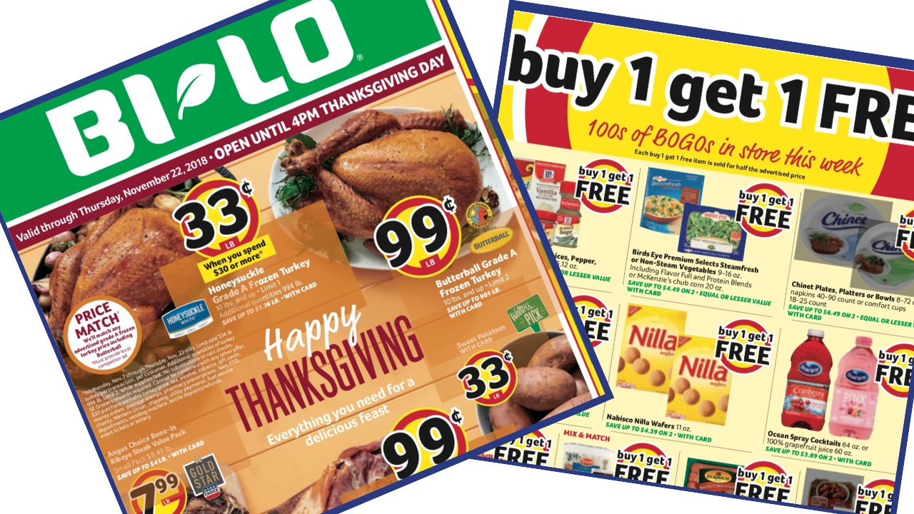 Bi Lo Weekly Ad 11 14 11 22 Southern Savers