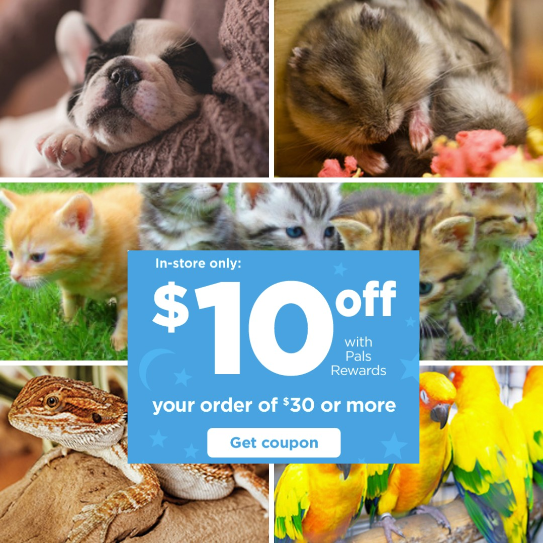 Petco: $10 off $30 Purchase for Rewards Members :: Southern