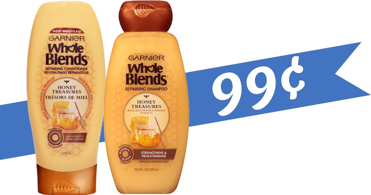 image about Garnier Whole Blends Printable Coupon identified as Garnier Coupon Helps make Complete Blends 99¢ :: Southern Savers