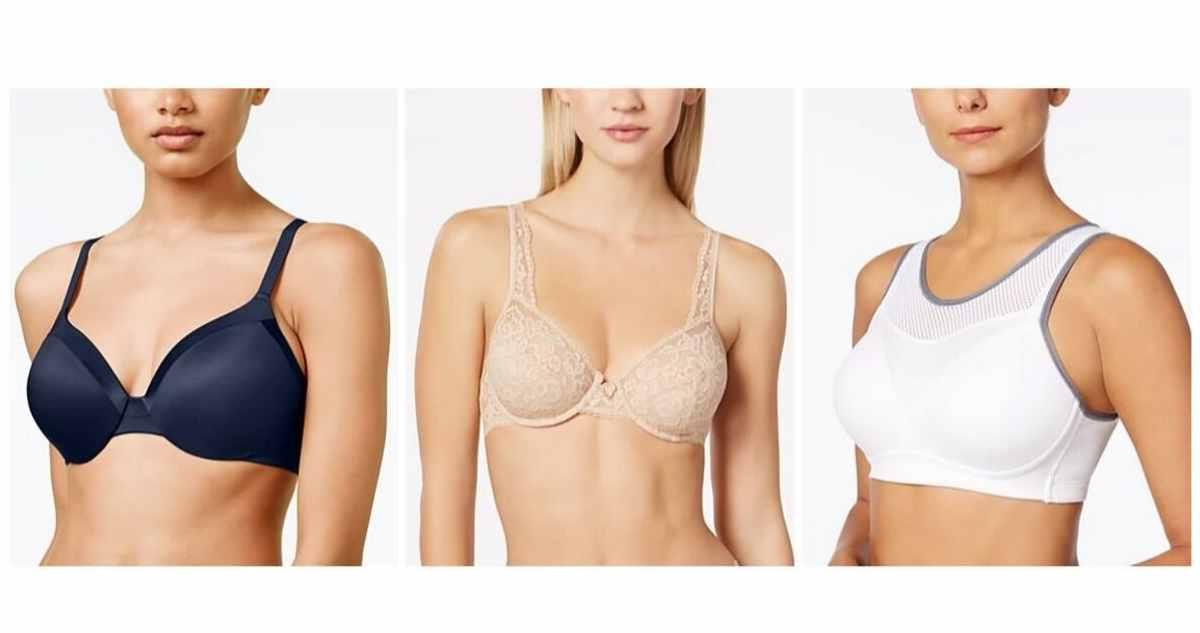 maidenform bras