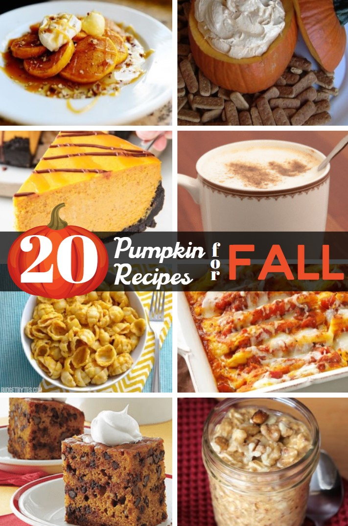 Fall is in the air, which to me means pumpkin! These 20 easy pumpkin recipes will carry you through until winter and beyond!
