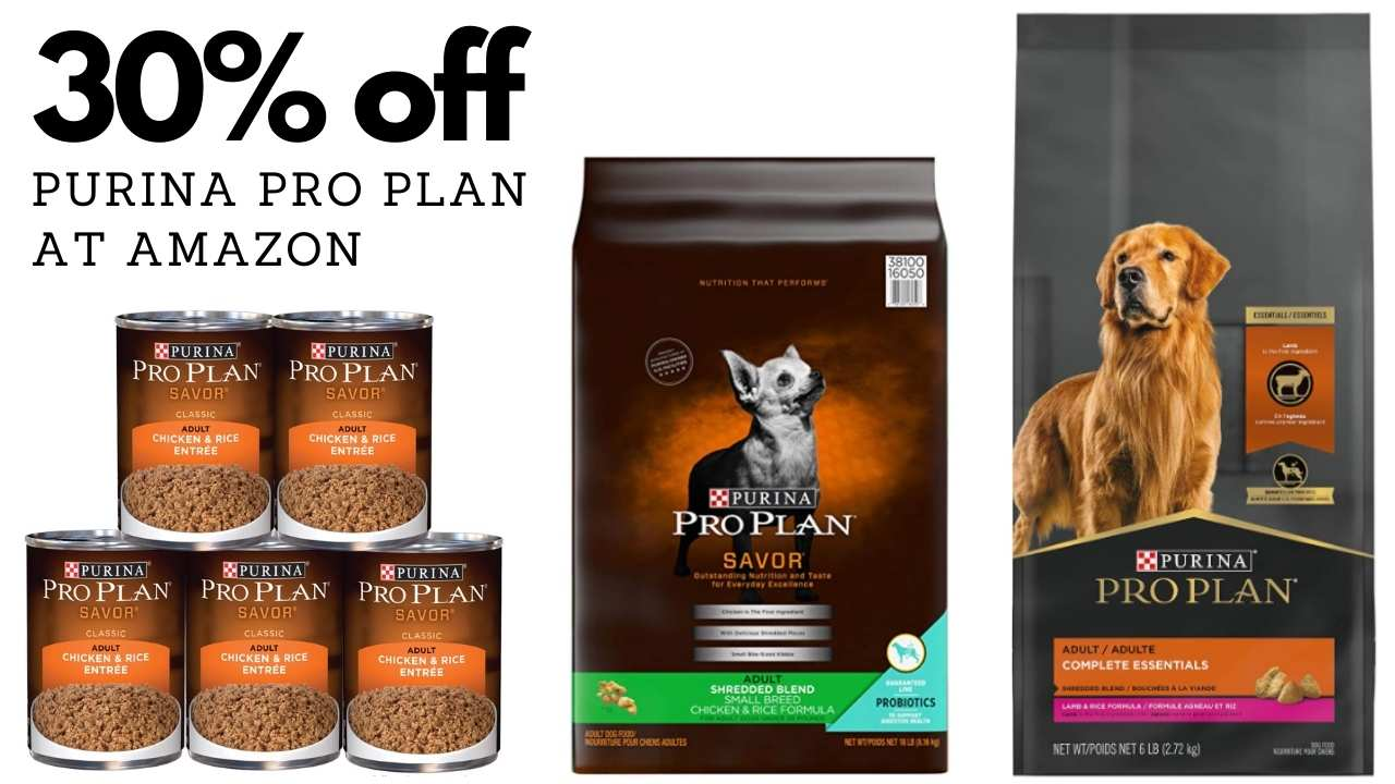 amazon pro plan dog food