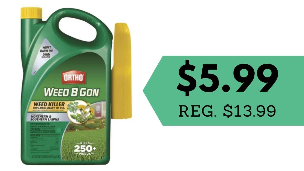 ace rewards lawn care savings