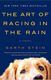the art of racing in the rain book