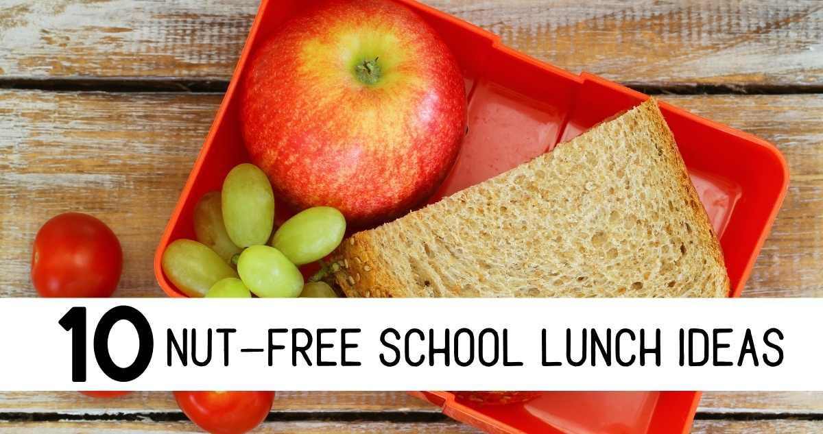 nut-free school lunch ideas