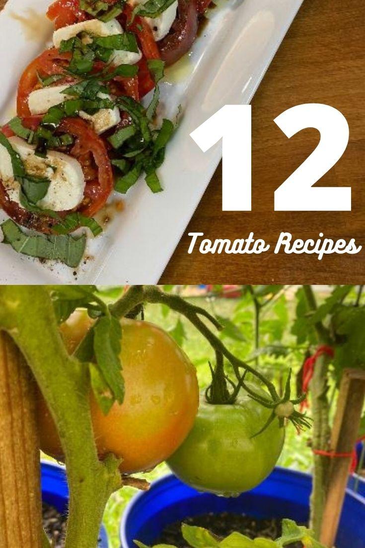 12 Garden Tomato Recipes